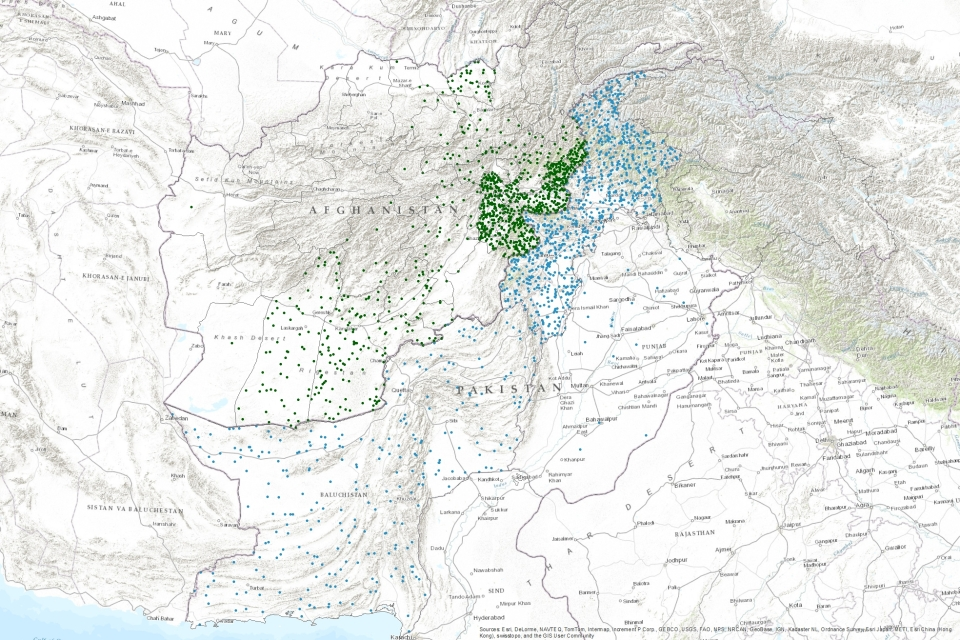 A draft map of some of the data I've been working with for my digital history project. Here: visualizing the flow of Afghan refugees from their homeland to Pakistan circa 1985, illustrating the ways in which the Soviet invasion both destroyed and shifted 'Pashtunistan' to the east